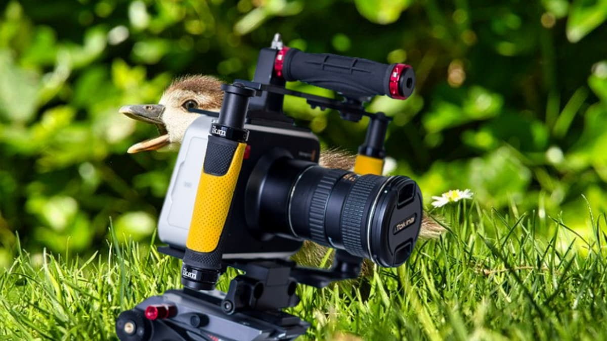 Remarkable Blackmagic Pocket Cinema Camera 4K