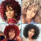 Synthetic Short Afro Curly Hair Wigs for Black Women Heat Resistant Fiber Wigs