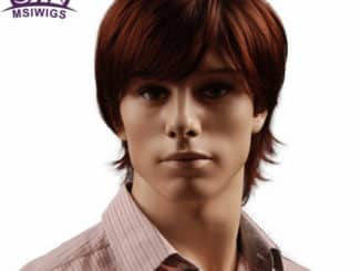 Wigs For Men 15