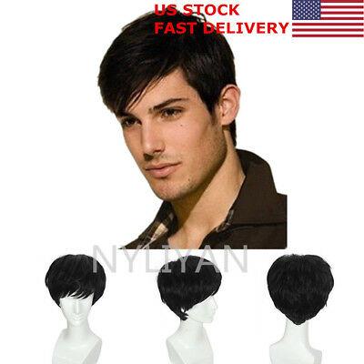 US Natural Black Men Hair Wigs Mens Short Hair Straight Layered Style Cosplay